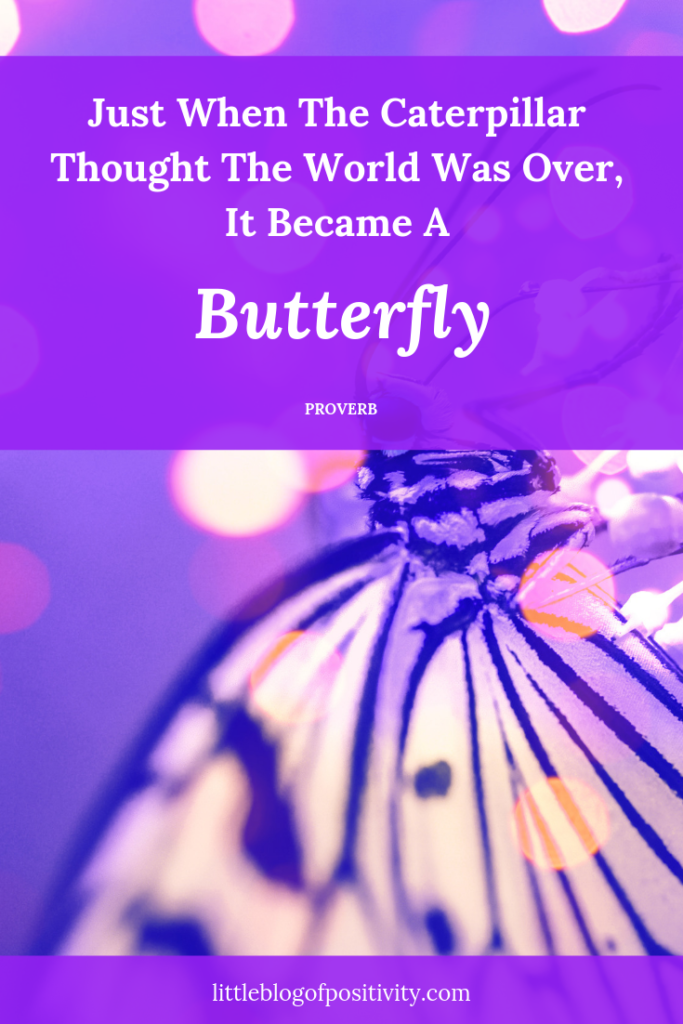 25 Inspirational Quotes To Remind You That Life is ... |Quotes About Beautiful Things Life