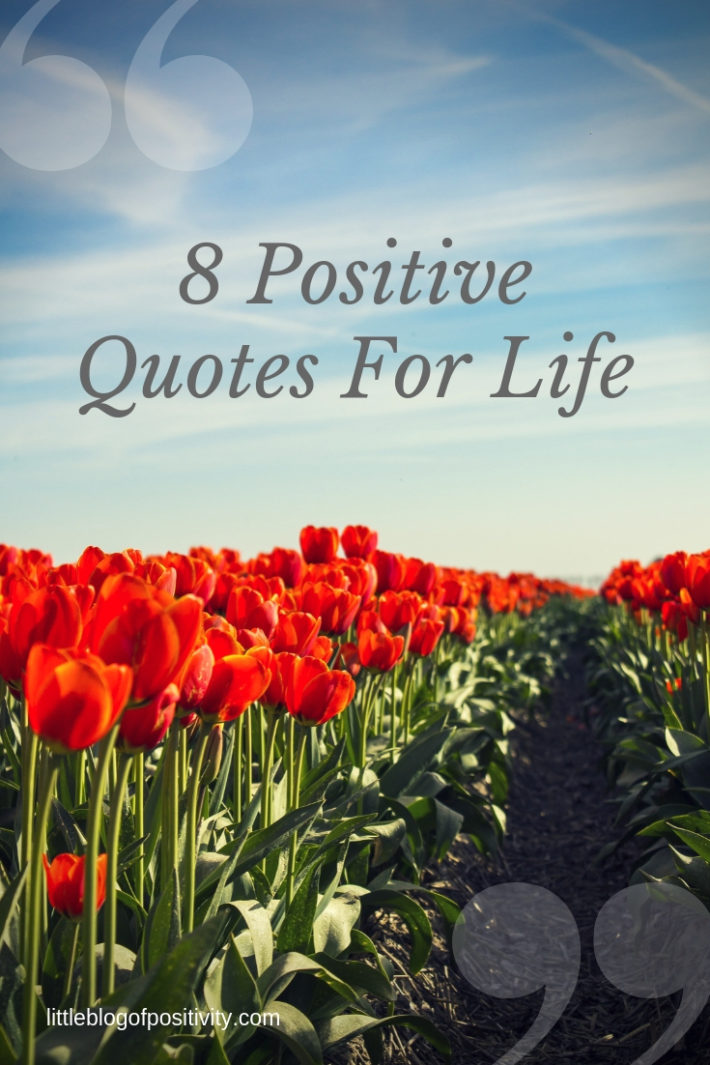 8 Positive Quotes For Life From My Twitter Gang